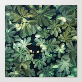 Where´s the kitty? Canvas Print