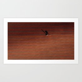 Man and horse in tune plowing the field, the tradition. Art Print