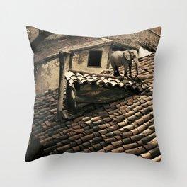 el elefante de mi vecina Throw Pillow