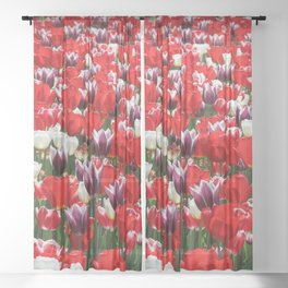 Tulip Sensation Sheer Curtain