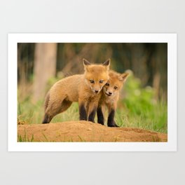 Close to You Baby Red Fox Photograph Art Print
