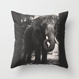 Elephant Love Throw Pillow