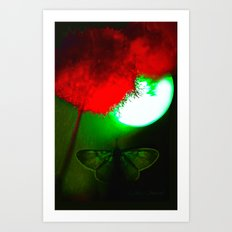 night butterfly Art Print