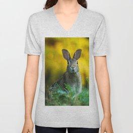 Rabbit | Lapin Unisex V-Neck