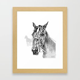 Sir Castleton (NZ) - Standardbred Framed Art Print