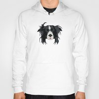 border collie Hoodies featuring Border Collie Illustration by DanielHonick