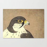 falcon Canvas Prints featuring Falcon by Lynette Sherrard Illustration and Design
