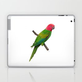 Colorful Parrot 2 Laptop & iPad Skin