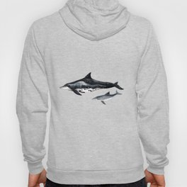 Rough-toothed dolphin (Steno bredanensis) Hoody