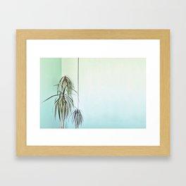 Palm Wall Framed Art Print