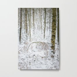Birch tree | Winter forest road covered with snow | fine art photo print in the netherlands | nature and travel photograpy  Metal Print
