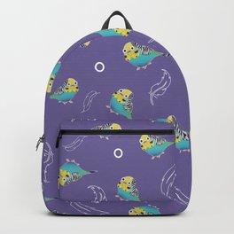 Galileo Backpack