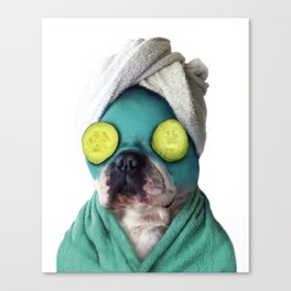 Dog SPA Art Print Canvas Print