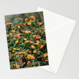 Confetti Lantana Stationery Cards