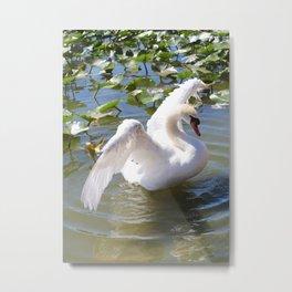 Pretty Swan Metal Print