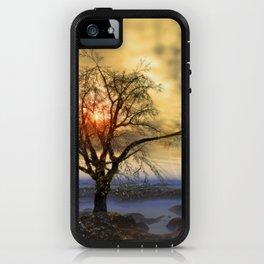 Tree in November sun iPhone Case