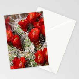 Beauty On Throns Stationery Cards