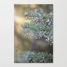 Passing Rain Canvas Print