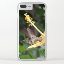 Hibiscus and Visitor Clear iPhone Case