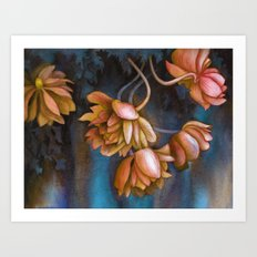 Anemone Flowers Art Print