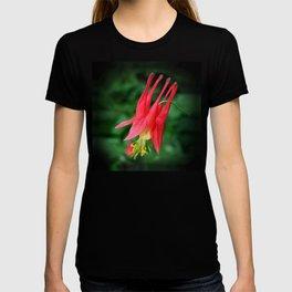 Wild Columbine T-shirt