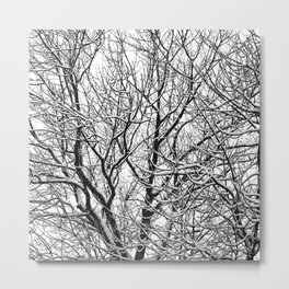 one winterday II Metal Print
