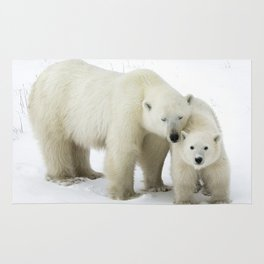 Mother and Cub Rug