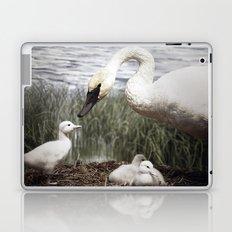 Tom Feiler Swan and her Cygnets Laptop & iPad Skin