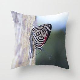 Butterfly 80 Throw Pillow