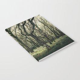 Moss Forest Notebook