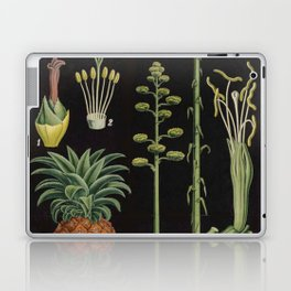 Botanical Pineapple Laptop & iPad Skin