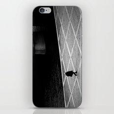 Riverbank iPhone & iPod Skin