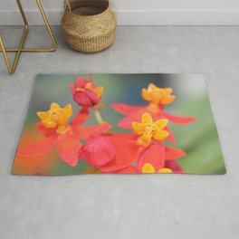 Succulent Red and Yellow Flower Rug