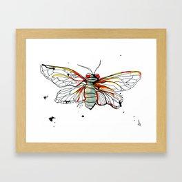 Cicada I Framed Art Print