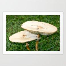 mushroom love Art Print