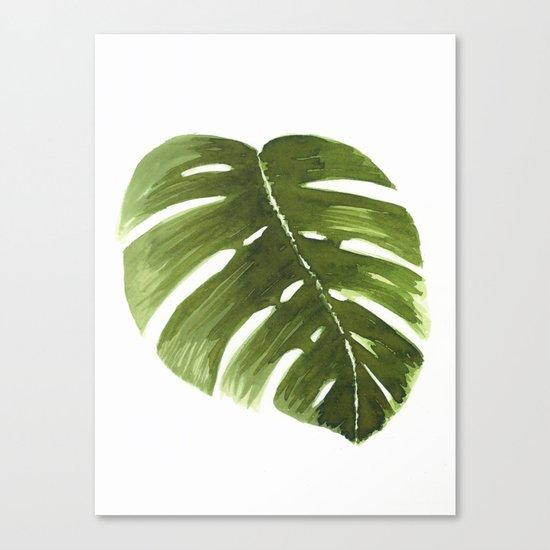 Nature leaves I monstera Canvas Print