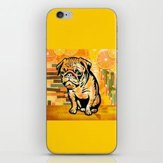 Pug pop art iPhone & iPod Skin