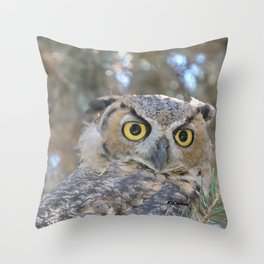 Young Owl at Noon Throw Pillow