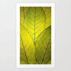 Every Leaf a Flower Art Print