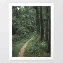 The Great Green Adventure Art Print
