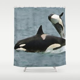 Playful Orcas Shower Curtain