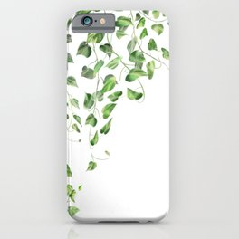 Golden Pothos - Ivy iPhone Case