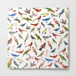 Modern whimsical colorful brazilian tropical birds Metal Print
