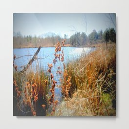Peaceful Nature Metal Print