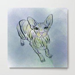 Wrinkle Puss Metal Print