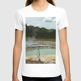 Wall Pool T-shirt