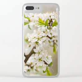 Blooming Cerasus cherry tree twig Clear iPhone Case