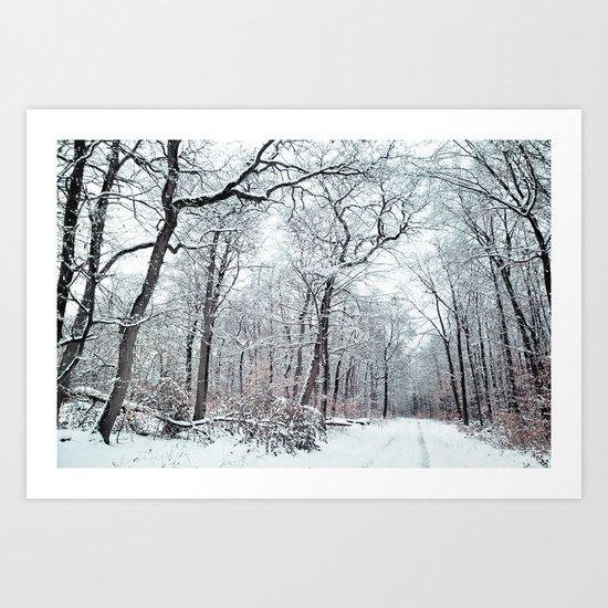 winter canopy Art Print