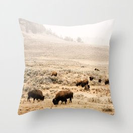 A Snow Storm Blowing In Throw Pillow
