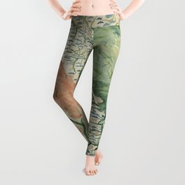 Yuenan Quan Jing Yu Tu (Map of Vietnam circa 1885) Leggings